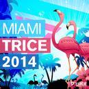 Miami Trice 2014 thumbnail