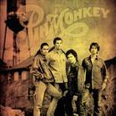 Pinmonkey thumbnail