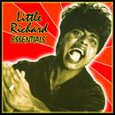 Little Richard: Essentials thumbnail