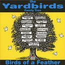 Birds Of A Feather thumbnail
