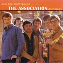 Just The Right Sound: The Association Anthology [Digital Version] thumbnail
