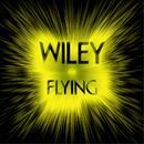 Flying (Remix) thumbnail