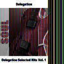 Delegation Selected Hits Vol. 1 thumbnail