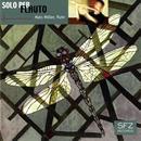 Solo per Flauto thumbnail