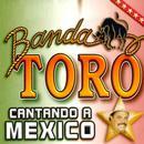 Cantando A Mexico thumbnail