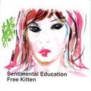 Sentimental Education thumbnail