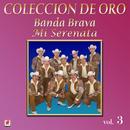 Colección De Oro, Vol. 3: Mi Serenata thumbnail