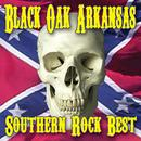 Southern Rock Best (Re-Recorded Versions) thumbnail