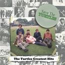 Save The Turtles: The Turtles Greatest Hits thumbnail