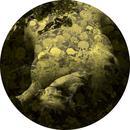 Yellobone - EP thumbnail
