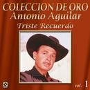 Coleccion De Oro, Vol. 1: Triste Recuerdo thumbnail