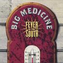 Fever in the South thumbnail