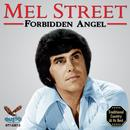 Forbidden Angel thumbnail