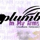 In My Arms (Kaskade Remixes) thumbnail