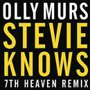 Stevie Knows (7th Heaven Remix) thumbnail