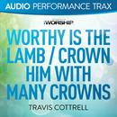 Worthy Is The Lamb / Crown Him With Many Crowns thumbnail