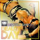 Beautiful Day (Single) thumbnail