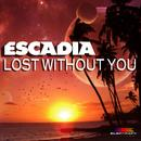 Lost Without You thumbnail