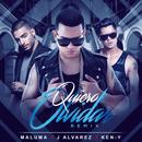 Quiero Olvidar (Remix) (Single) thumbnail