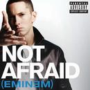 Not Afraid (Radio Single) (Explicit) thumbnail