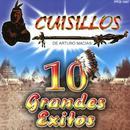 10 Grandes Exitos thumbnail