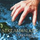 Streamwalker thumbnail