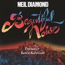 Beautiful Noise thumbnail