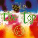 The Top (Deluxe Version) thumbnail