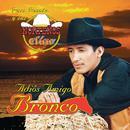 Adios Amigo Bronco thumbnail