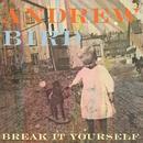 Break It Yourself thumbnail