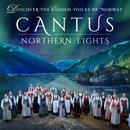 Northern Lights thumbnail