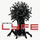 Tree Of Lyfe thumbnail