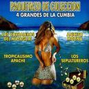 Paquetazo De Coleccion - 4 Grandes De La Cumbia thumbnail
