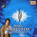 Maha Mrityunjay - Divine Vibrations To Invoke Lord Shiva thumbnail