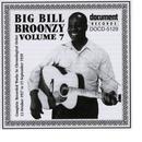 Big Bill Broonzy Vol. 7 1937 - 1938 thumbnail