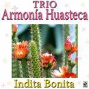 Indita Bonita thumbnail