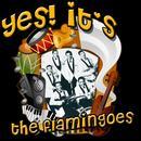 Yes! It's The Flamingos thumbnail