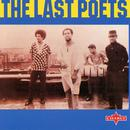 The Last Poets thumbnail