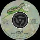 Everything I Own / I Don't Love You (45 Version) (Single) thumbnail