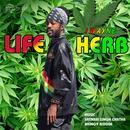 Life Herb (Single) thumbnail