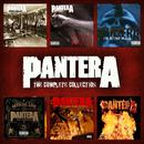 The Pantera Collection thumbnail