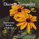Discover Tranquility (Instrumental Melodies Of Reflection) thumbnail