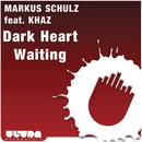 Dark Heart Waiting thumbnail