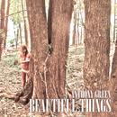 Beautiful Things (Deluxe) thumbnail