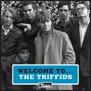 Welcome To The Triffids thumbnail