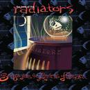 The Best Of The Radiators: Songs From The Ancient Furnace thumbnail