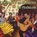 Una Noche De Flamenco En Andalucía thumbnail