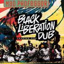 Black Liberation Dub thumbnail