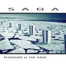 Pleasure And The Pain (2015 Edition) thumbnail