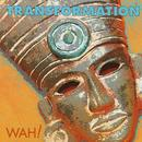 Transformation thumbnail